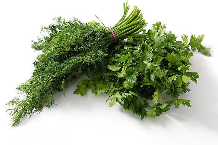 Зеленый салат с оливковым маслом