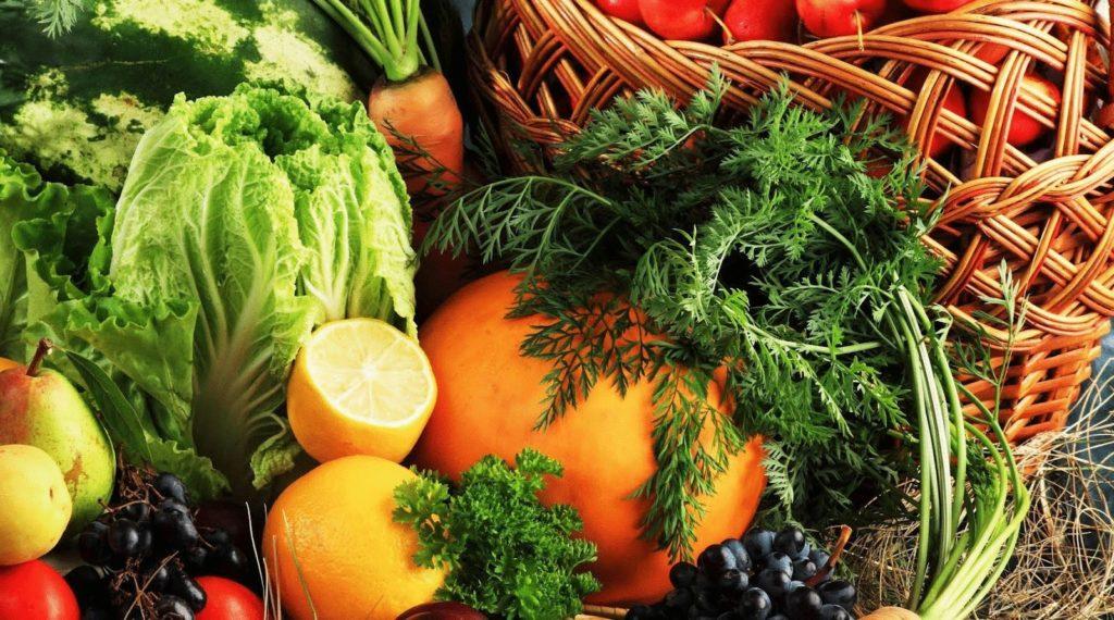 История Всемирного дня вегетарианства