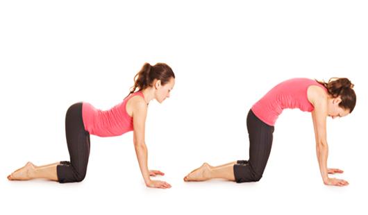Особенности упражнения