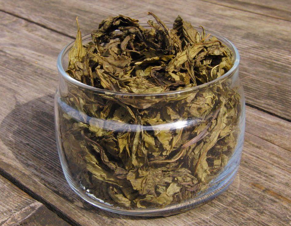 Чем ферментированный чай отличается от неферментированного
