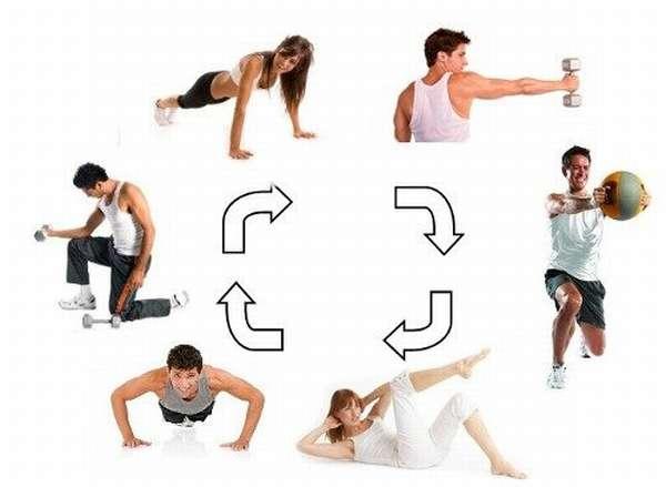 Что такое круговая тренировка?