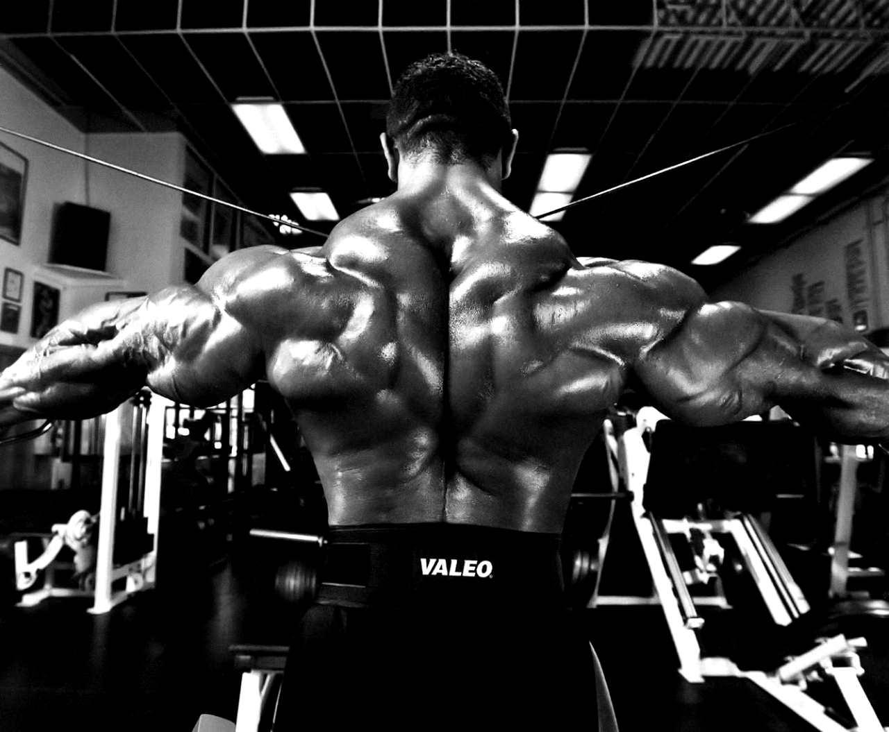 Прокачка всей мускулатуры спины