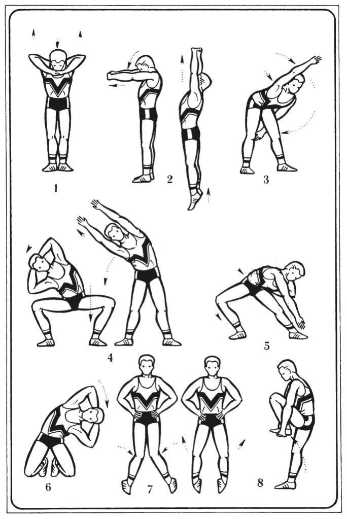Принципы выполнения упражнений в домашних условиях