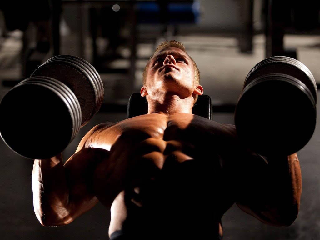 В чем суть силовых тренировок для укрепления мускулатуры и похудения?