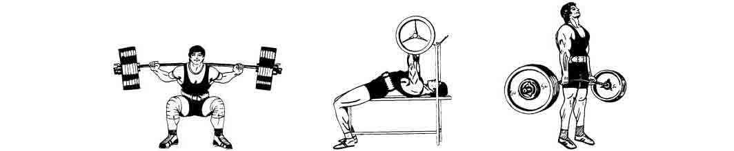 Составляем программу тренировок: какие упражнения подойдут
