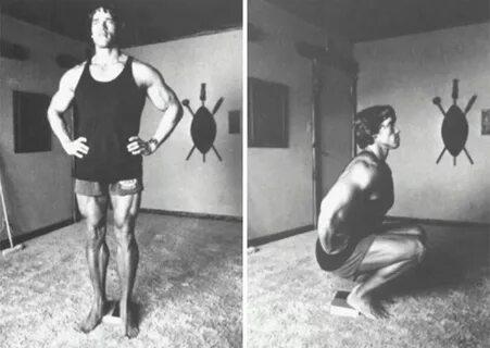 Как организована тренировка у Арнольда Шварценеггера?