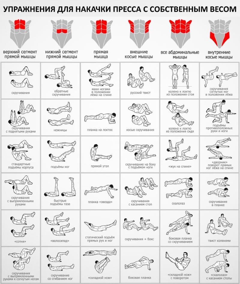 Лучшие упражнения в программе тренировок с собственным весом