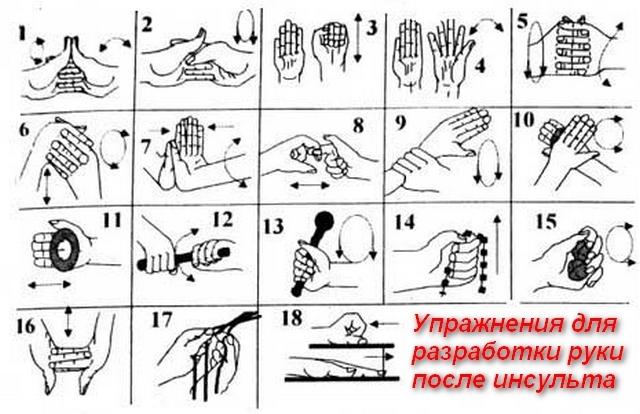 Лучшие упражнения для рук