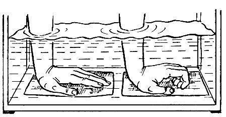 Комплекс упражнений в воде