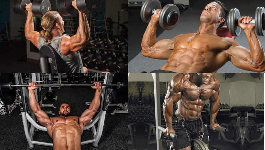 Базовые упражнения на грудь